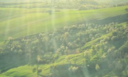 Peisaje din zbor 9 263x160 Anul ce a trecut
