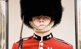 Soldat in numele reginei10 263x160 Dor de Anglia