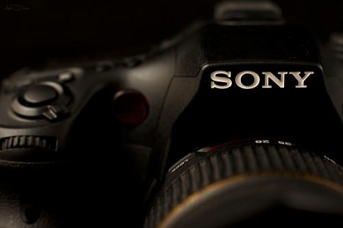 Sony A77 Foto 20 500x333 Review Sony A77